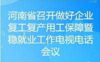 河南省召开做好企业复工复产用工保障暨稳就业工作电视电话会议